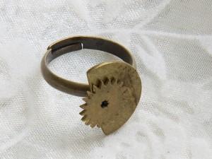 Zahnrad Ring