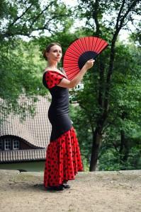 Flamenco Ladybird