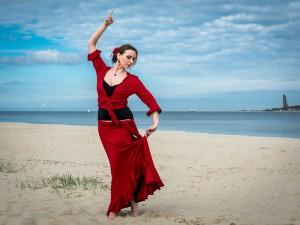 Flamenco Flammenrot 2